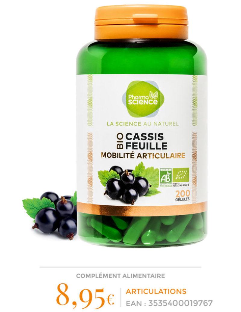 CASSIS_FEUILLE-ok