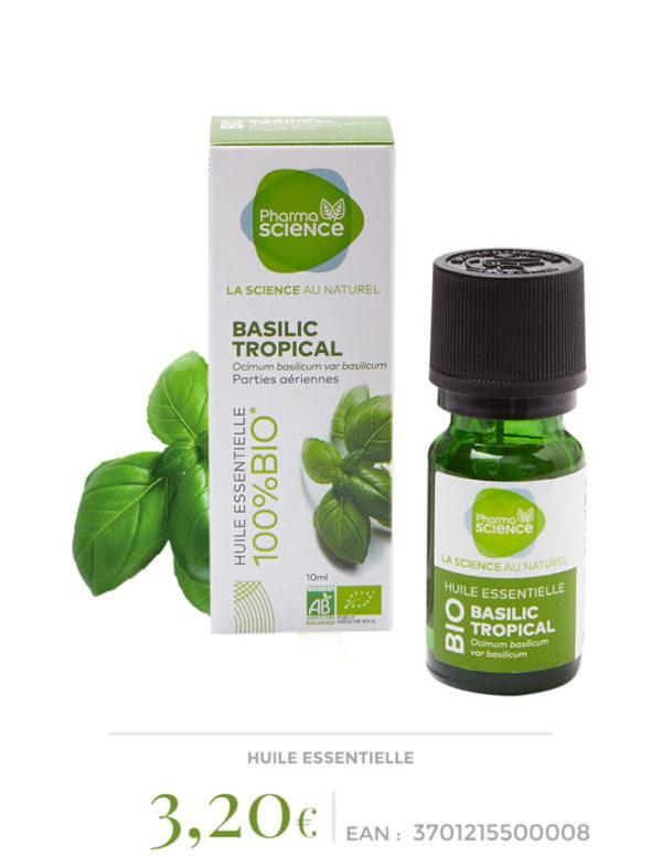 basilic-tropical
