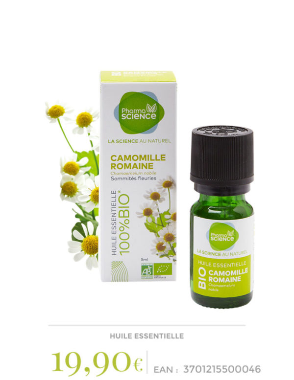camomille-romaine