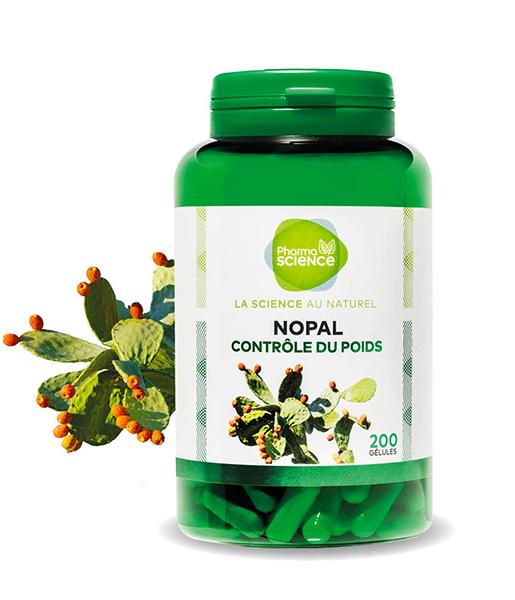 nopal2-blogavril