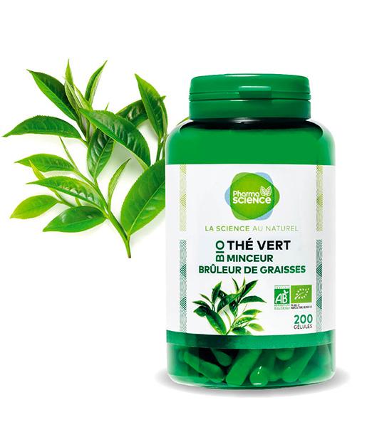 the-vert2-blogavril